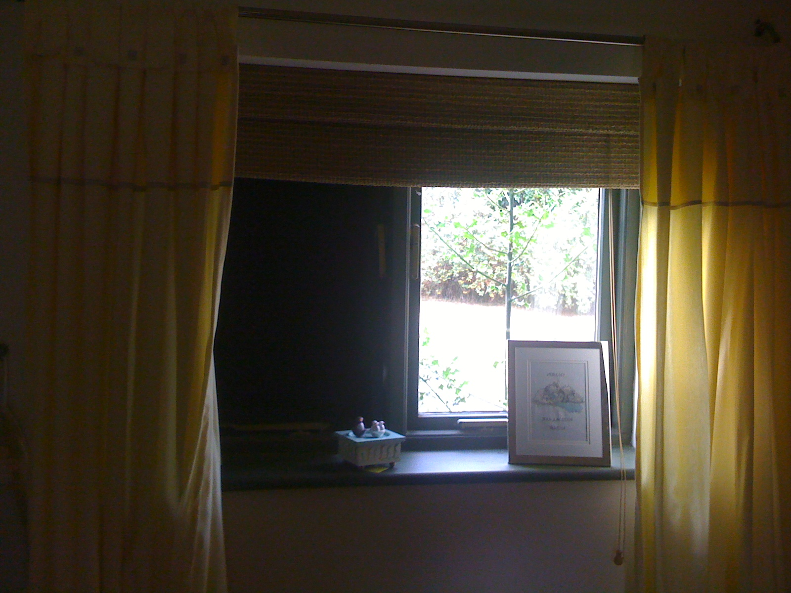 Magic Blackout Blind on left hand window